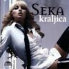 Seka Aleksic - Poslednji let - (Audio 2007) mp3