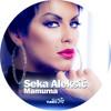 Seka Aleksic - Mamurna - (Audio 2014) mp3