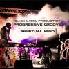 PROGRESSIVE GROOVE - SPIRITUAL MIND (Black Label Production)