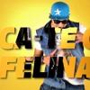 FLORIN SALAM SI COSTI DE LA TIMISOARA  - MISCA - TE CA O FELINA [official song]