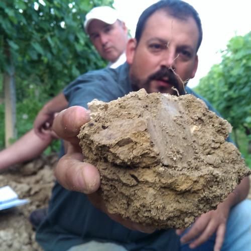 IDTT Wine 207: Pedro Parra