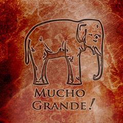 Mucho Grande - 01 Panini Fandango