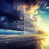 Tony Igy - Perfect World (Original Mix) mp3