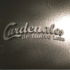 Cardenales De Nuevo Leon Si No Fuera Por Ti 2014