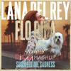 Lana Del Rey vs. Flo Rida - Summertime Feeling (DJ CAVA MashUp)