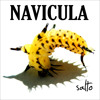 Navicula - Mafia Hukum.mp3