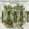 Larry - Calicoe