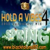 HOLD A VIBES Vol.4 (Spring 2013 Dancehall) RAW