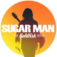 Rodriguez Sugar Man (Goldfish Remix) Artwork