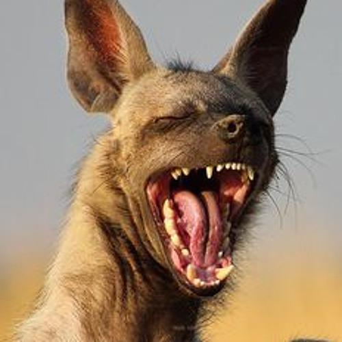 HYENA - Batik Mp3 | ngunduh lagu Goldie Hyena 1 Mp3