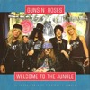 Download 'WELCOME TO THE JUNGLE' by Guns N' Roses - Full Guitar Cover Mp3