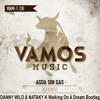 Agua Sin Gas - Vamonos (Danny Wild & Nataly K