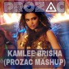 Happy New Year - Kamlee Brisha (PROZAC Mashup)