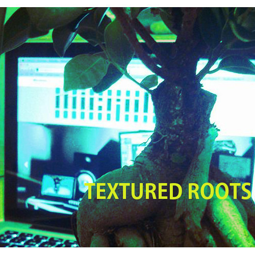 TEXTURED ROOTS