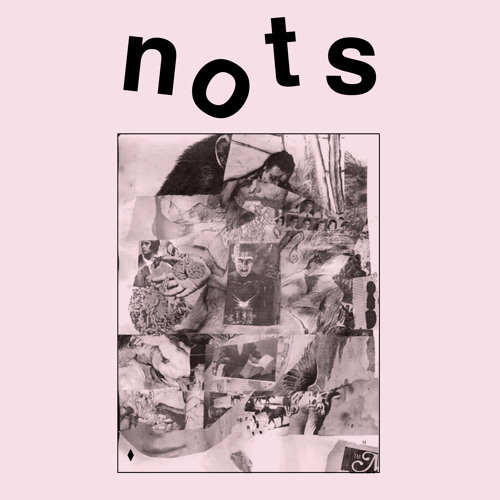 """Nots """"Reactor"""" // 'We Are Nots' Out Now On Goner Records"""