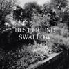 Best Friend - Swallow