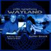 WAYLAND celtic symphony ft Chris Gill (guitar) & Band of Rain