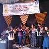 Violin's by Wira Violin Comunity