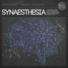 CHECK YOUR HEAD - for Pragmatic Theory's - SYNAESTHESIA