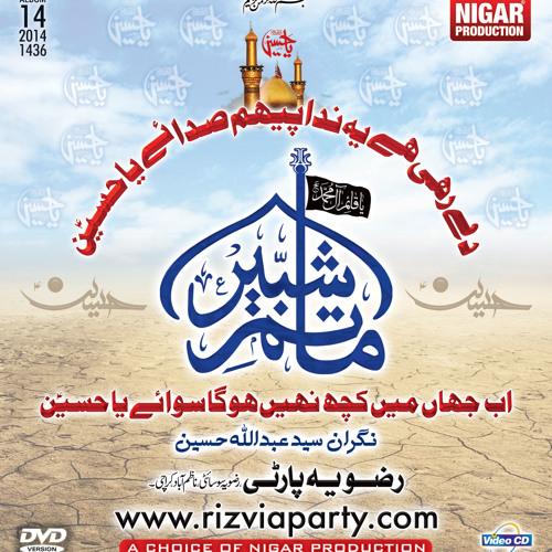 Rizvia Party Album 14 (2014). Day rahi hay yeh Nida.