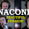 "Nicki Minaj - Anaconda (""Beautiful"" Version by Sean Leary) **EXPLICIT**"