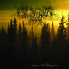 From The Sunset, Forest and Grief - Broken Lights
