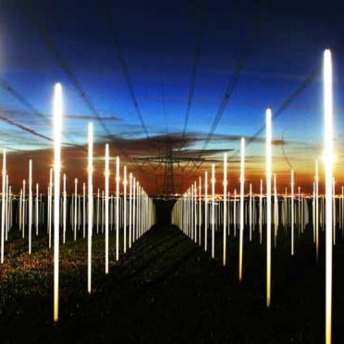 Electric Wires - Adam Woodard