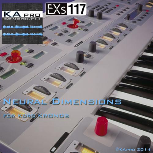 EXs117 Neural Dimensions
