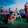 Per Mars I Muntanyes (Cover - Els amics de les arts)