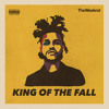 The Weeknd - King Of The Fall (Remix) [Feat. Ty Dolla $ign]
