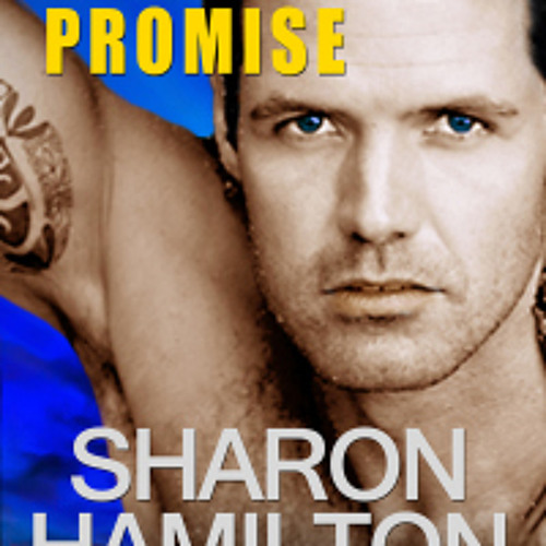 """SEAL's PROMISE"" sample narration by J.D. Hart"