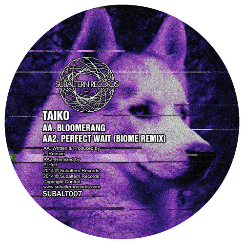SUBALT007 - Taiko - Bloomerang