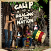 Download Cali P - Solution [Healing Of The Nation - Hemp Higher Productions 2014] Mp3