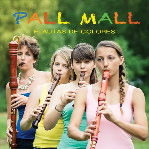 Allegro z Koncertu a moll/J. S. Bach/Flautas de Colores - ukázka/sample track