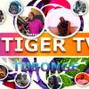 Mesach Semakula - Nakurwala TIGER TV AUDIO PRO