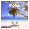 Calvin Harris ft. Ellie Goulding - I Need Your Love (Sokko & Lyons Remix)