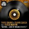 Taito Tikaro & Flavio Zarza Feat. Estela Martin - Matinee Land Of Dreams (Alex Acosta Big Room Mix)