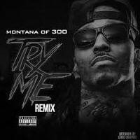 Montana Of 300 - Try Me