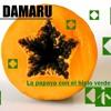 DJ DAMARU - La papaya con el hielo verde