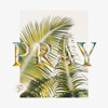 Clarens - Pray