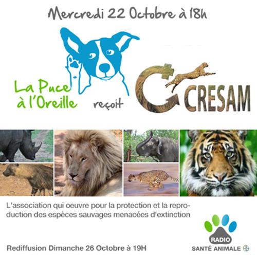 La Puce à l'Oreille #50 - La conservation des espèces sauvages menacées (avec l'association CRESAM)