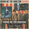 Bring me the Horizon Drown Acoustic Cover