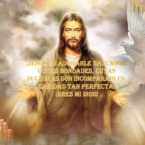 FUEGO ABRASADOR- CELINES DIAZ