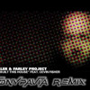 The Heller & Farley Project Feat. Cevin Fisher - We Built This House (Tony Pavia Remix)