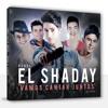Banda El Shaday - Musica  Pode Ou Não Pode (Ao Vivo)