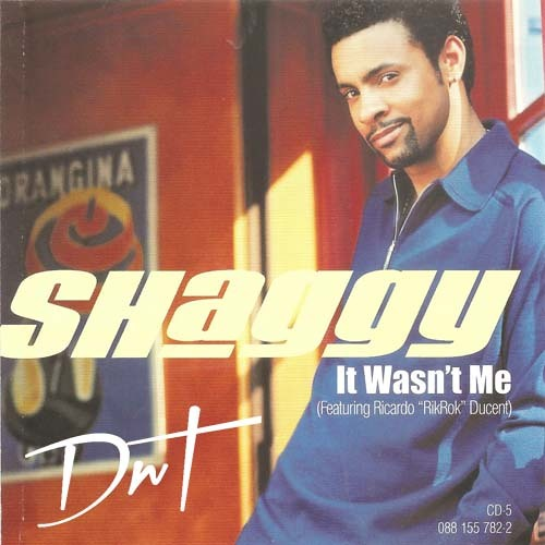 Shaggy - Something Different / The Train Is Coming
