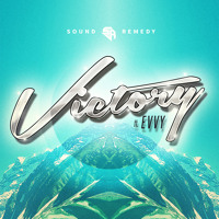 Sound Remedy - Victory (Ft. Evvy)