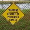 Robert Bowles: Snake Farm (Cover Collab)