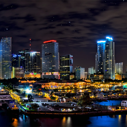 One Night  in  MIAMI LIGHTS