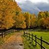 Soft Autumn Days AJ